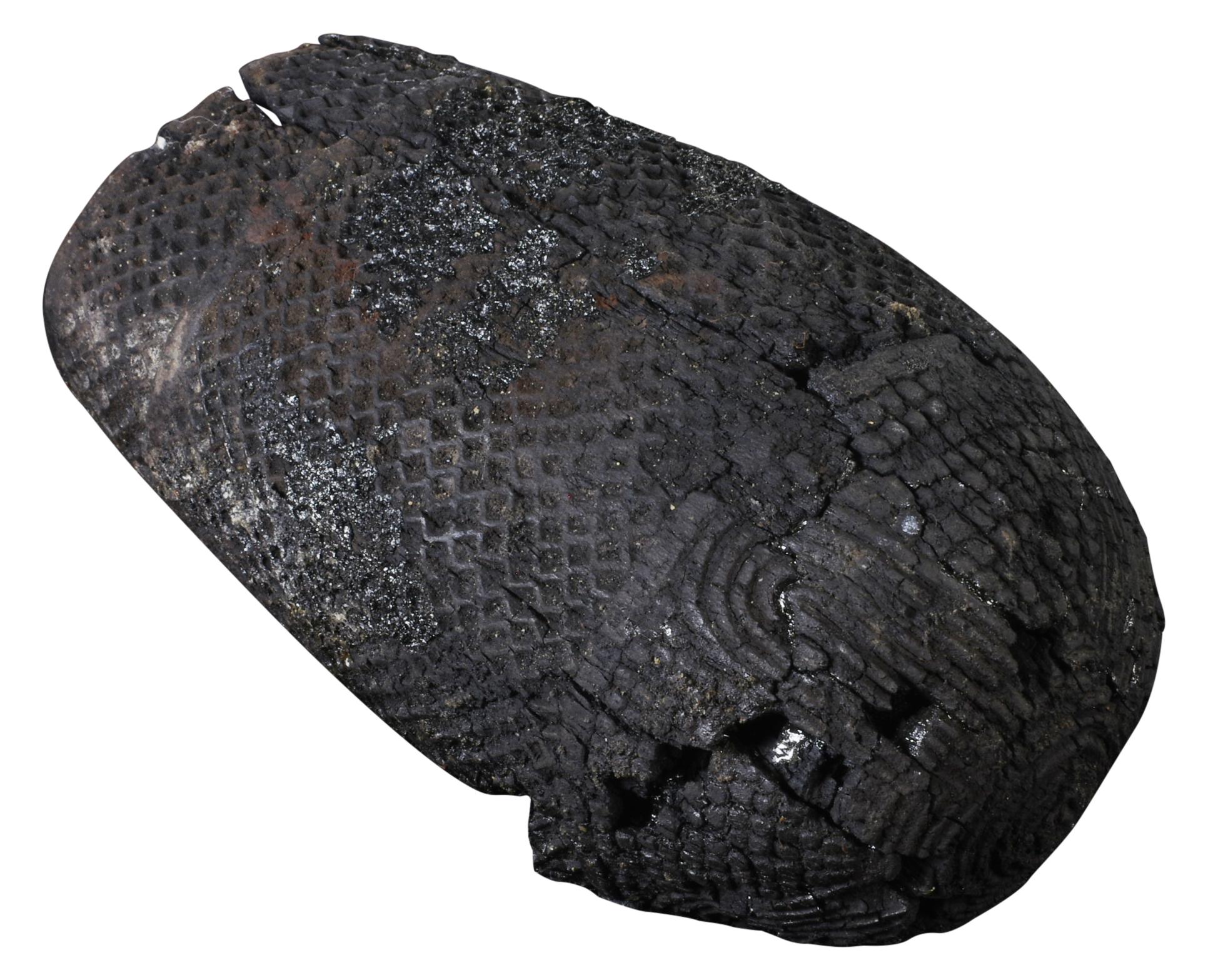 KNM-3233-4